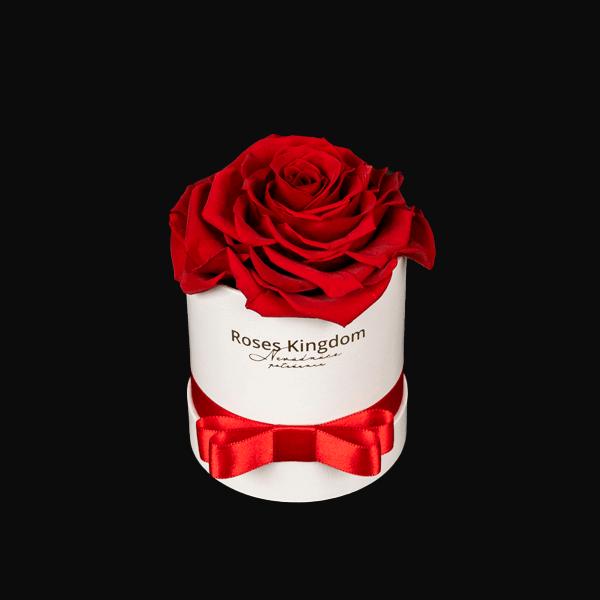 Box-z-ruzi-single-cervena-biela-1